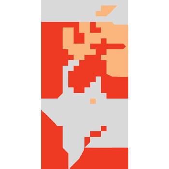 Mario Fire